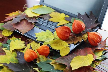 Herbstlaub auf einem Laptop